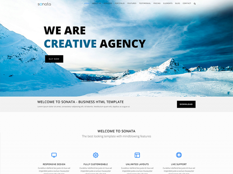Sonata Onepage Bootstrap Responsive HTML Template