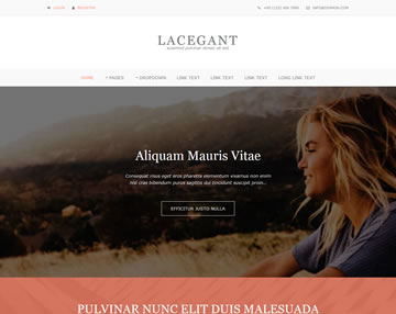 Lacegant Free Website Template
