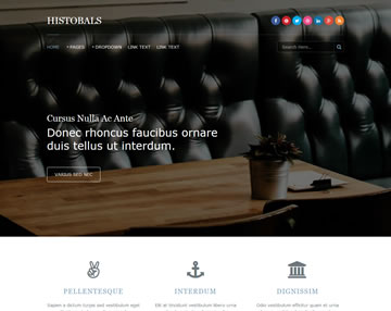 Histobals Free Website Template