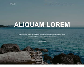Splash Free Website Template