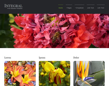 Integral Free Website Template