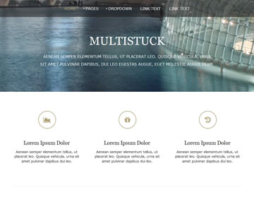 MultiStuck Free Website Template