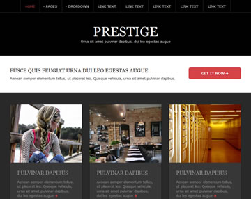 Prestige Free Website Template