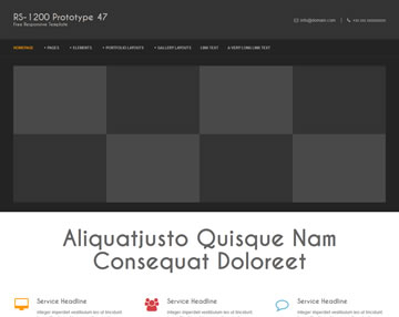 RS-1200 PTT 47 Free Website Template